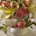 amaryllis-centerpiece-ideas5-3.jpg