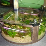aquarium-coffee-table5.jpg