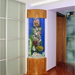 aquarium-in-home-interior12.jpg