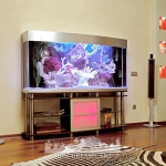 aquarium-in-home-interior3.jpg