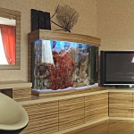 aquarium-in-home-interior13.jpg