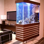 aquarium-in-home-interior22.jpg
