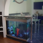 aquarium-in-home-interior34.jpg