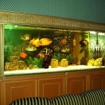 aquarium-in-traditional-home4.jpg