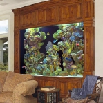 aquarium-in-traditional-home5.jpg