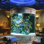 aquarium-in-traditional-home8.jpg