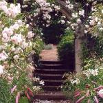 arbor-and-archway-in-garden1-10.jpg