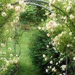 arbor-and-archway-in-garden1-12.jpg