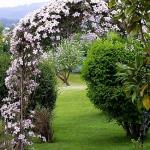 arbor-and-archway-in-garden1-7.jpg