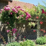 arbor-and-archway-in-garden1-18.jpg