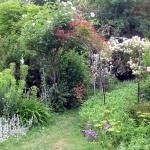 arbor-and-archway-in-garden1-21.jpg