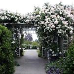 arbor-and-archway-in-garden1-22.jpg