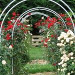 arbor-and-archway-in-garden1-23.jpg