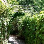 arbor-and-archway-in-garden2-6.jpg