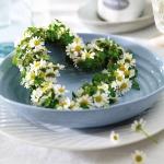 aromatic-spice-herbs-decoration1-7.jpg
