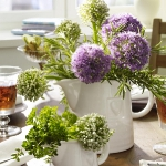 aromatic-spice-herbs-decoration2-1.jpg