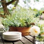 aromatic-spice-herbs-decoration2-6.jpg