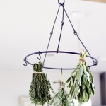 aromatic-spice-herbs-decoration3-6.jpg