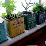 aromatic-spice-herbs-decoration4-10.jpg