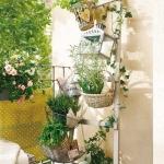 aromatic-spice-herbs-decoration4-11.jpg