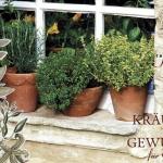 aromatic-spice-herbs-decoration4-12.jpg