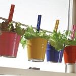 aromatic-spice-herbs-decoration4-13.jpg
