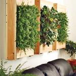 aromatic-spice-herbs-decoration4-15.jpg