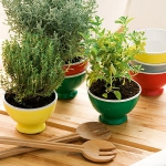 aromatic-spice-herbs-decoration4-3.jpg