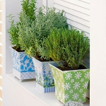 aromatic-spice-herbs-decoration4-5.jpg