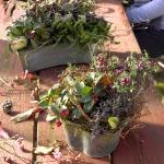autumn-berries-bouquet-ideas2-5.jpg