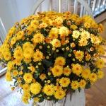 autumn-decor-to-one-porch1-8.jpg