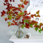 autumn-flavor-without-flowers4.jpg