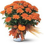 autumn-flowers-ideas-one-tone4.jpg