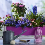 balcony-flowers-ideas1-1.jpg