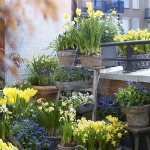 balcony-flowers-ideas2-3.jpg