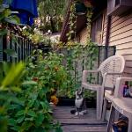 balcony-flowers-ideas4-3.jpg