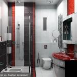 bathroom-contrast-rwb2.jpg