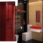 bathroom-contrast-rwb9-1.jpg