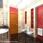 bathroom-contrast-rwb10-3.jpg