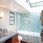 bathroom-in-blue-combo-misc6.jpg