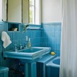 bathroom-in-blue-furniture-and-sanity4.jpg