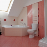 bathroom-in-feminine-tones-soft7.jpg