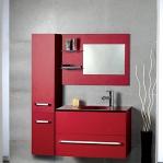 bathroom-in-red-furniture4.jpg