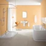 bathroom-in-spice-tones-peach5.jpg