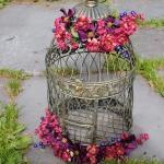 bird-cage-decoration3-2.jpg