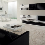 black-and-white-livingroom4-1.jpg