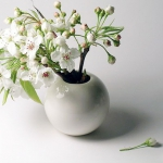 blooming-branches-in-home18.jpg