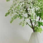 blooming-branches-in-home4.jpg