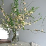 blooming-branches-in-home19.jpg