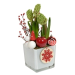 blooming-plants-new-year-decoration1-4
